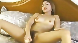 Very Hairy Asian Pussy